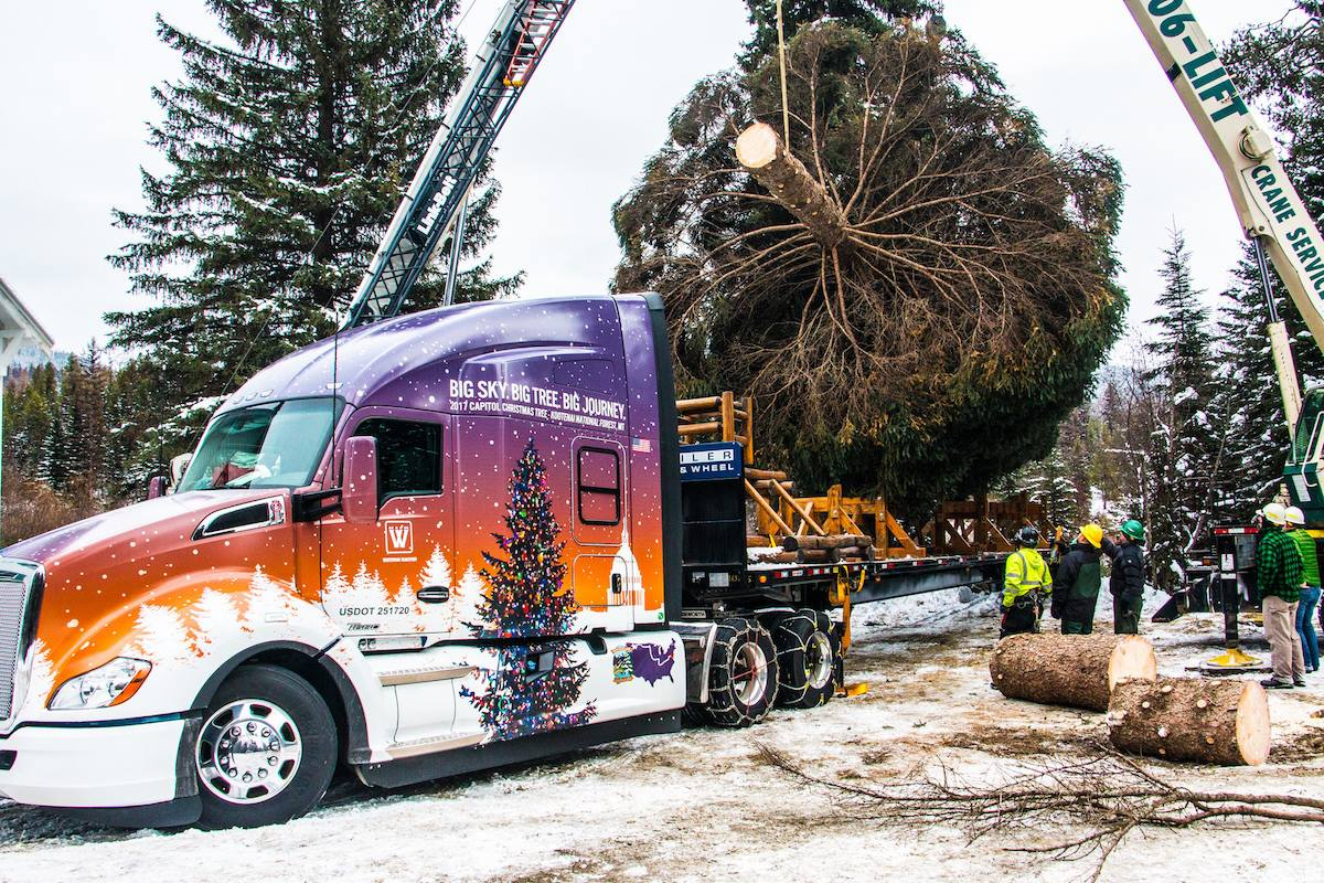 Whitewood Transport Selected to Haul US Capitol Christmas Tree